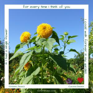 forever-in-my-garden